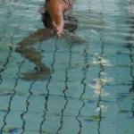 Varmtvandssvømning